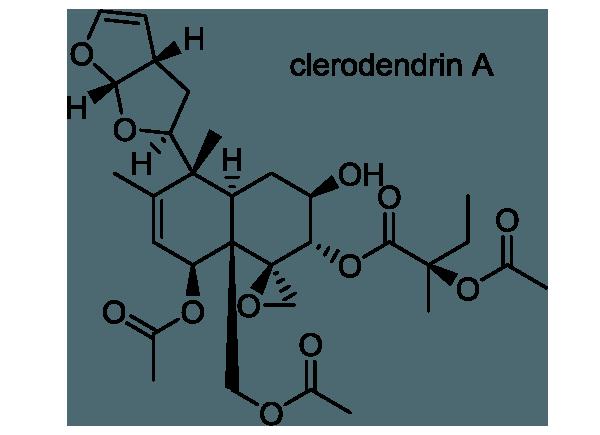 クサギ 化学構造式1