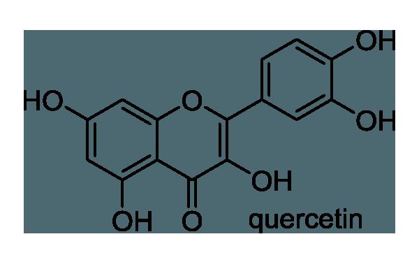 クヌギ 化学構造式1