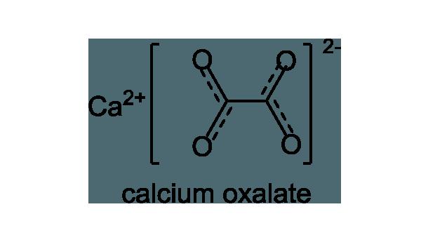 クワズイモ 化学構造式1