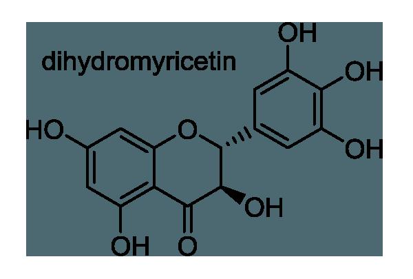 ケンポナシ 化学構造式1