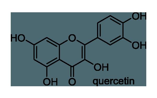 コナラ 化学構造式1