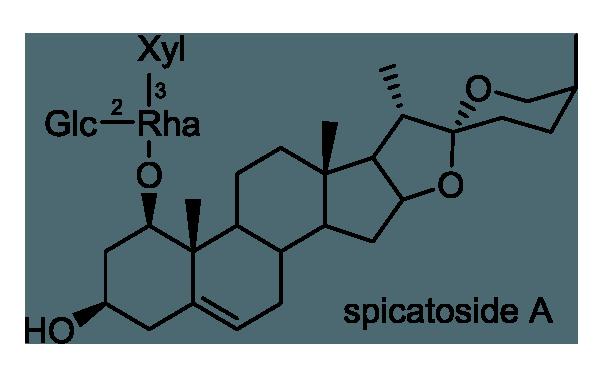 コヤブラン 化学構造式1