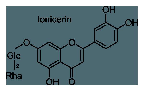 シュロ 化学構造式1