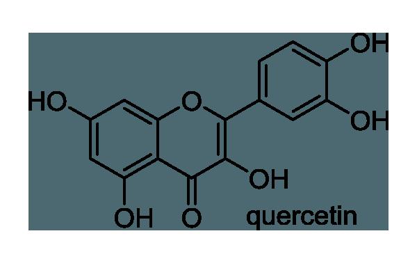 シラカシ 化学構造式1