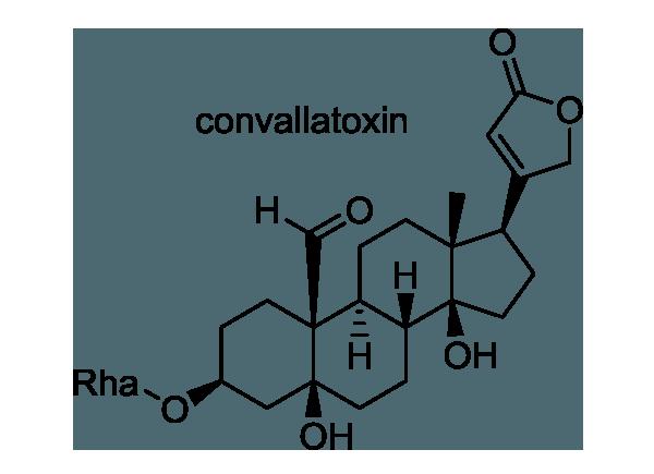 スズラン 化学構造式1