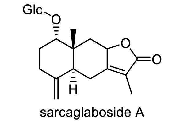 センリョウ 化学構造式1