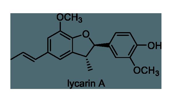 タブノキ 化学構造式1