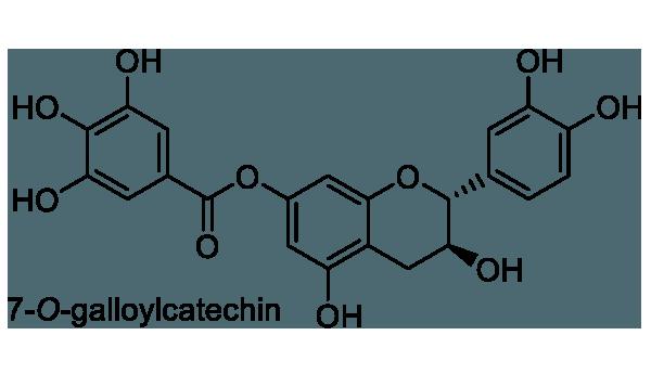 タンキリマメ 化学構造式1