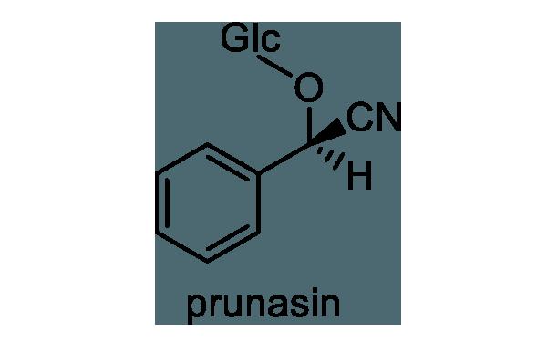 バクチノキ 化学構造式1
