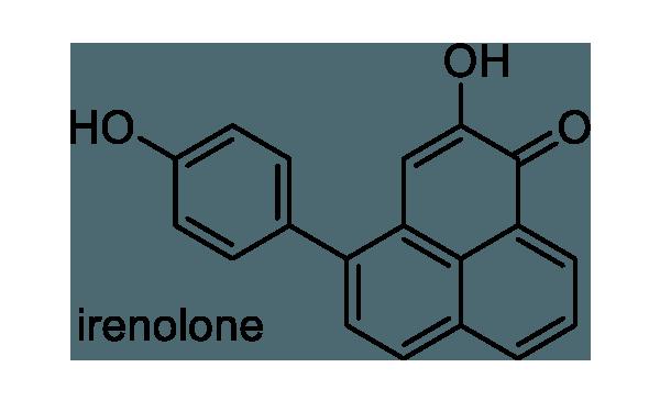 バショウ 化学構造式1