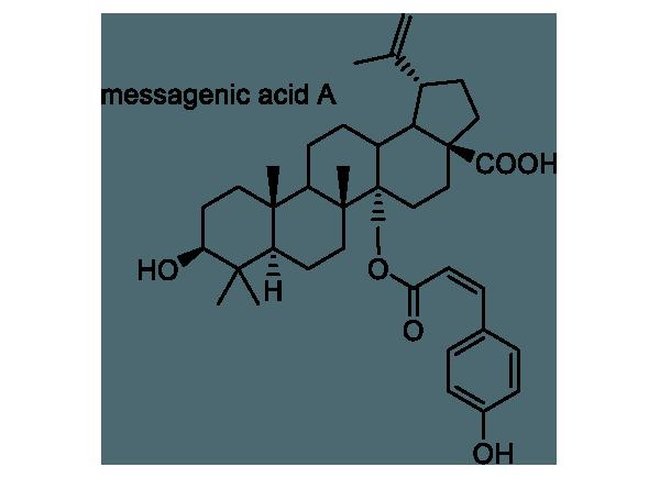 ハマナツメ 化学構造式1