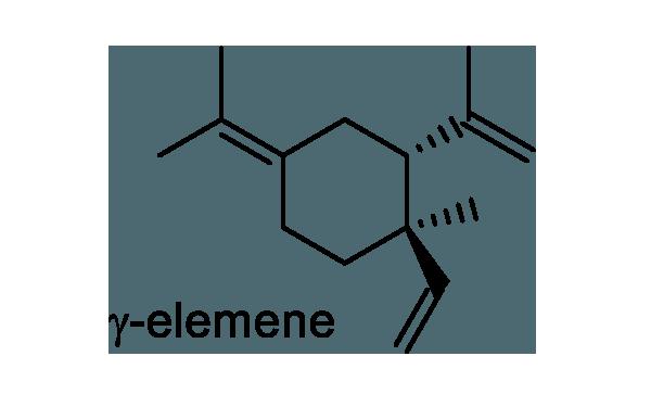 ハリギリ 化学構造式1