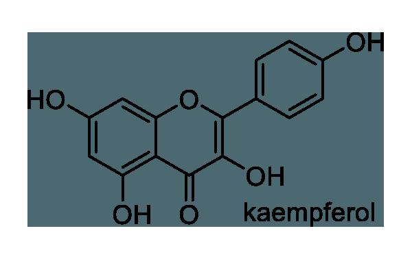 ヒツジグサ 化学構造式1