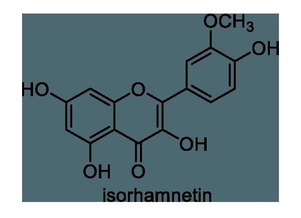 ヒメガマ 化学構造式1
