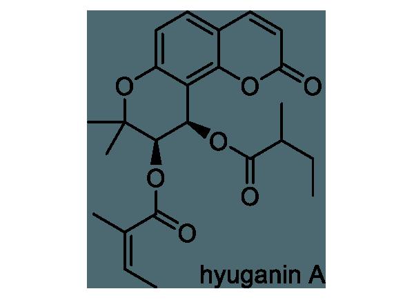 ヒュウガトウキ 化学構造式1
