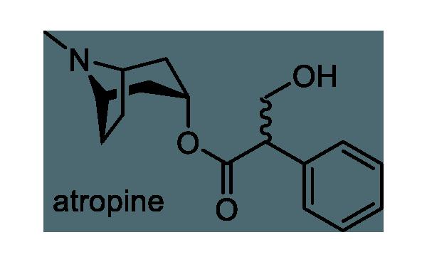 ベラドンナ 化学構造式1