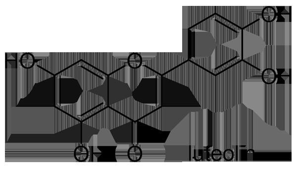イグサ 化学構造式3