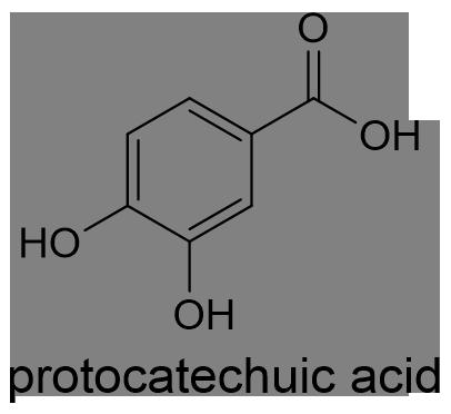 イネ 化学構造式2