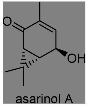 ウスバサイシン 化学構造式2