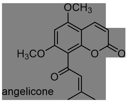 ウド 化学構造式3