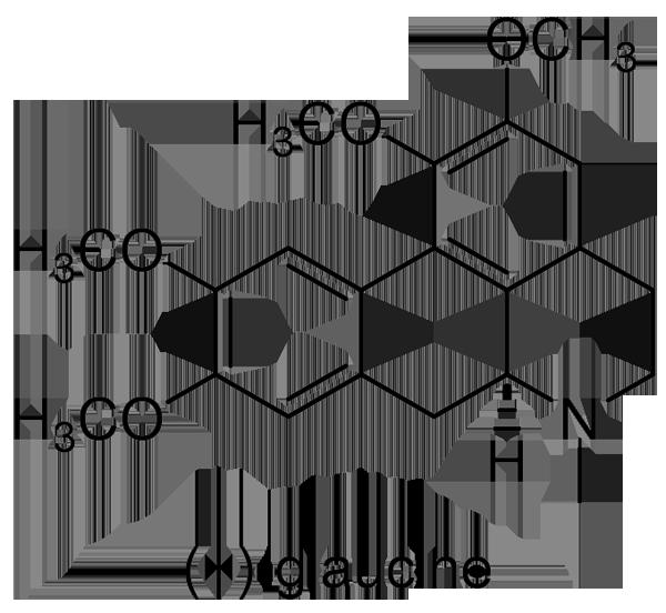 エンゴサク 化学構造式3