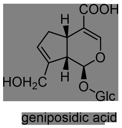 オオバコ 化学構造式2