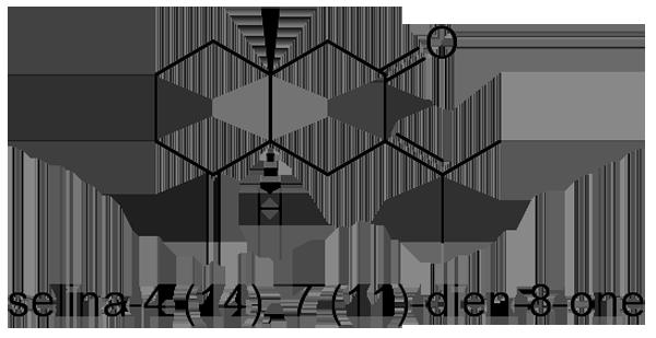 オオオバナオケラ 化学構造式2