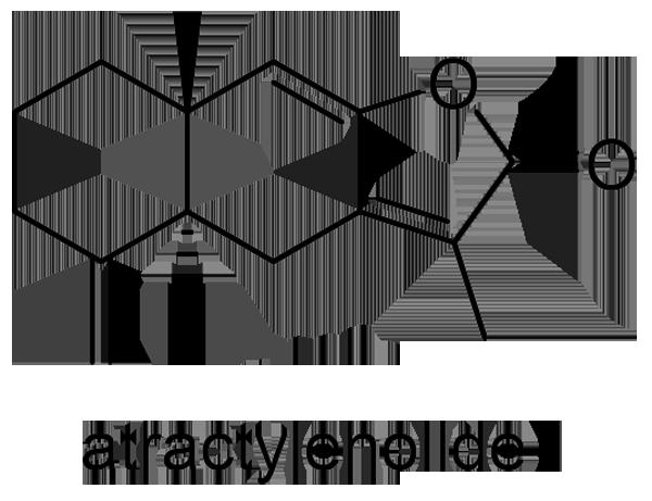 オオオバナオケラ 化学構造式3