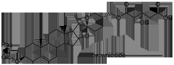 オニユリ 化学構造式2