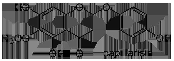 カワラヨモギ 化学構造式3