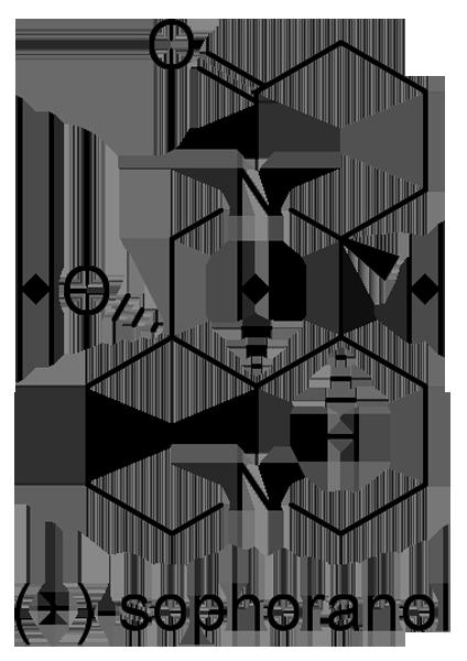クララ 化学構造式2
