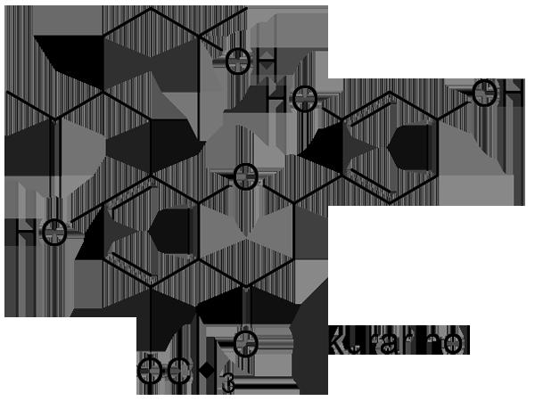 クララ 化学構造式3