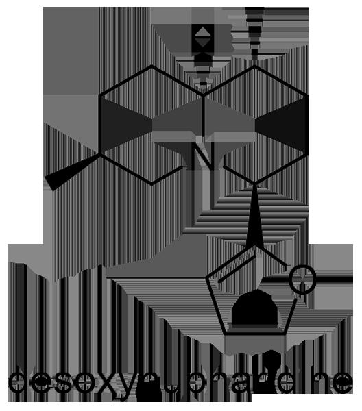 コウホネ 化学構造式2