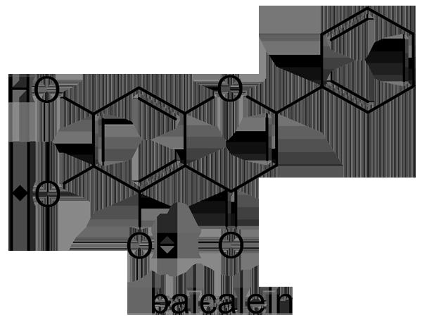 コガネバナ 化学構造式2