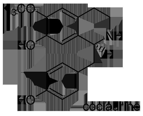 コブシ 化学構造式2