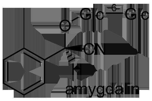 サンザシ 化学構造式3