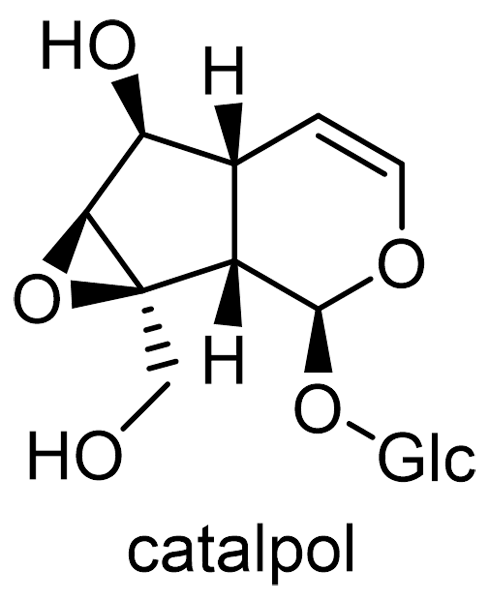 ジオウ 化学構造式2