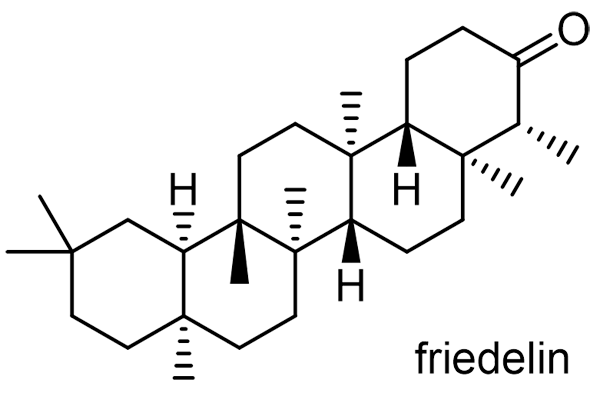 シオン 化学構造式2