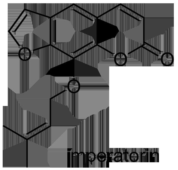 シシウド 化学構造式2