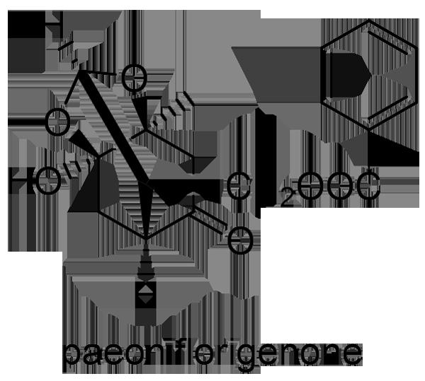 シャクヤク 化学構造式3