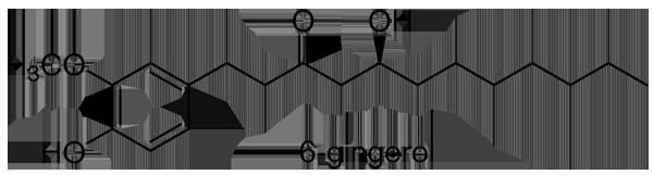 ショウガ 化学構造式3