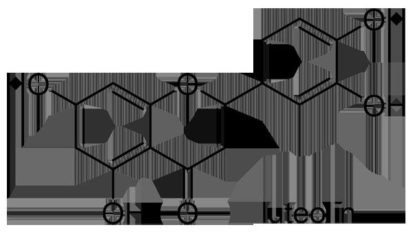 スイカズラ 化学構造式2