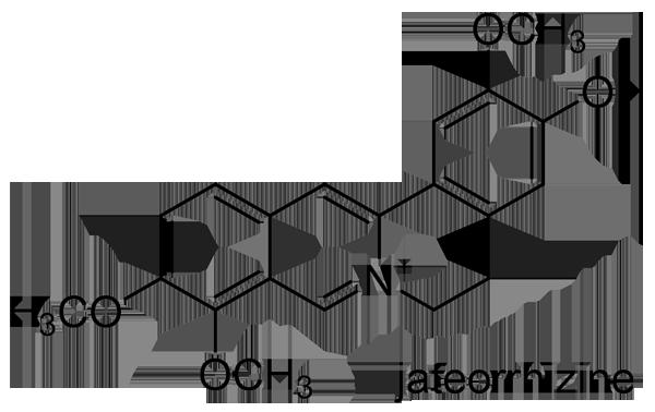 セリバオウレン 化学構造式3