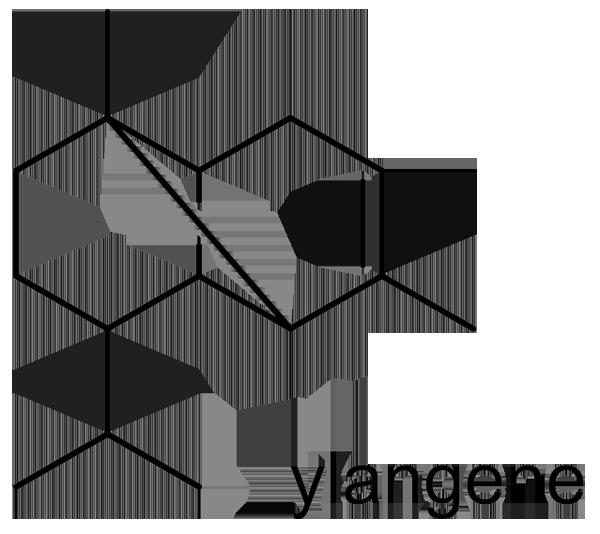 チョウセンゴミシ 化学構造式3