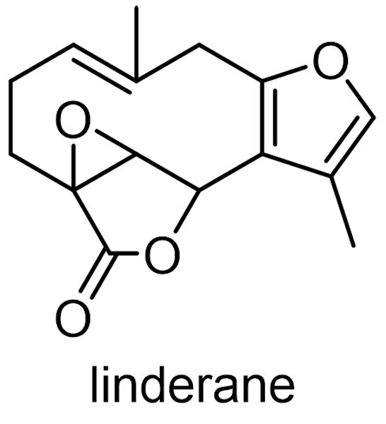 テンダイウヤク 化学構造式2