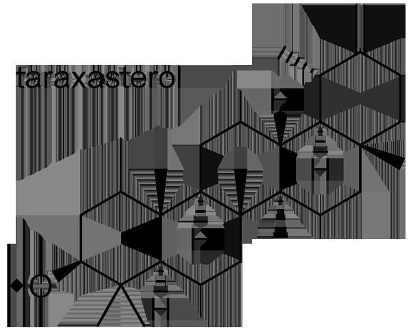 トウガン 化学構造式2