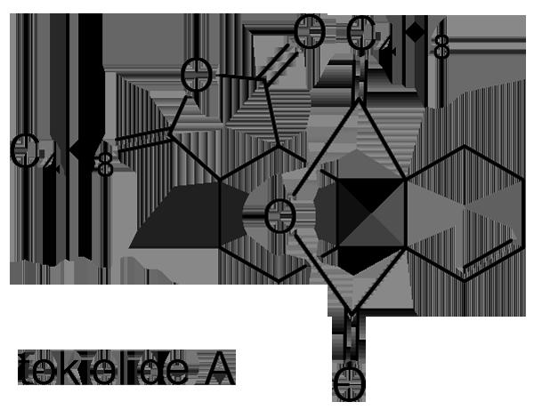 トウキ 化学構造式2
