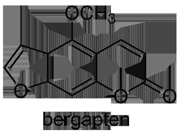 トウキ 化学構造式3
