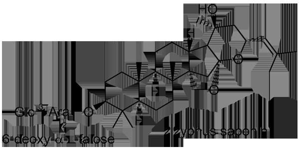 ナツメ 化学構造式2