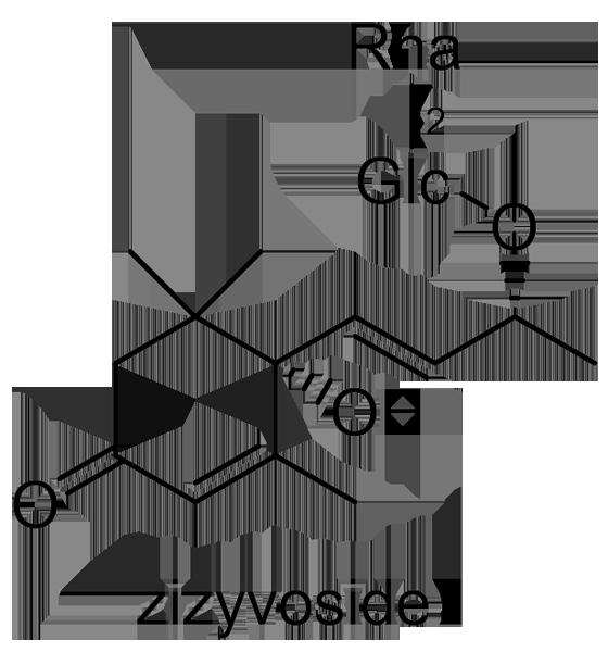 ナツメ 化学構造式3